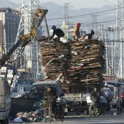 China stoppt Müllimport aus Deutschland (Foto)