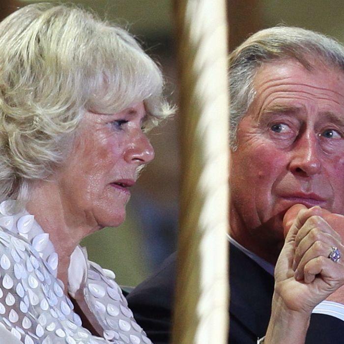 Scheidungsschock für Ehefrau von Prinz Charles (Foto)