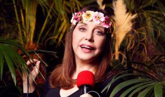 Schlagersängerin Tina York. (Foto)