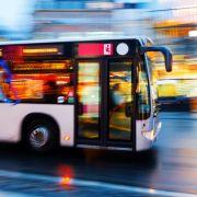 """""""Wo ist der Bus mit den Leuten, die das interessiert?"""" (Foto)"""