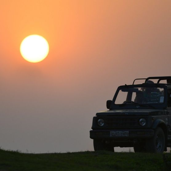 Deutscher Millionär und sein Sohn sterben bei Safari (Foto)