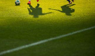 3. Liga im Live-Stream und TV. (Foto)