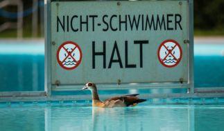 Ein sechs Jahre alter Junge ist bei einem Schwimmkurs in Bad Oeynhausen in Niedersachsen gestorben (Symbolbild). (Foto)