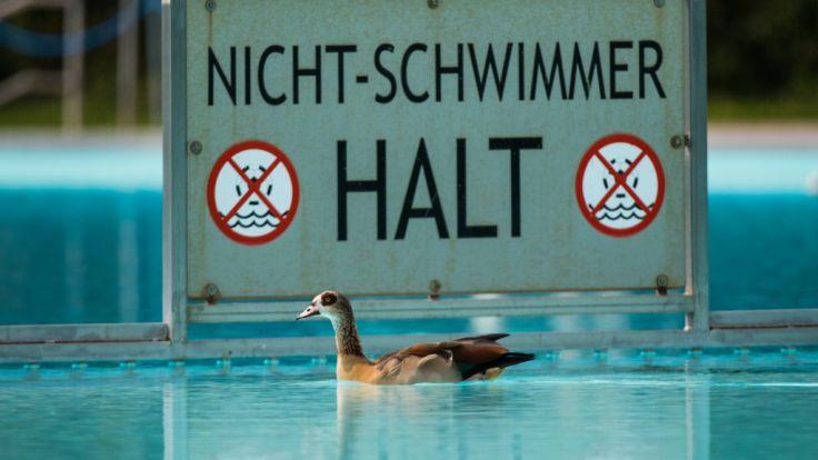6-jähriges Kind aus Kalletal stirbt während eines Schwimmkurses