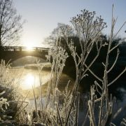 -10 Grad und Dauer-Frost! Der Winter ist zurück (Foto)