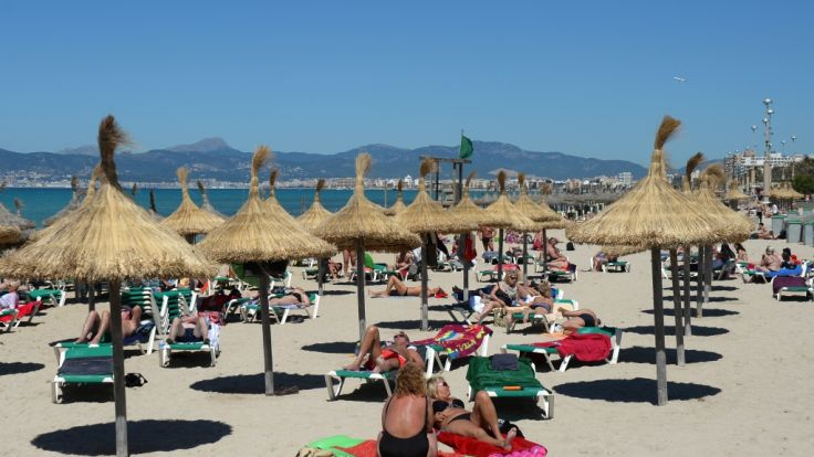 Drama auf Mallorca: Koch Kai Palma ist tot