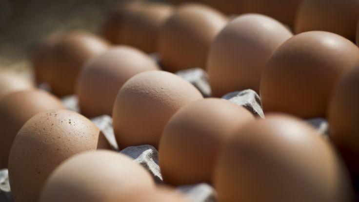 Wegen Durchfallbakterien: Geflügelhof ruft Eier zurück