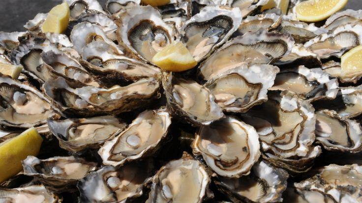 Das Unternehmen Cultimer ruft Austern zurück.