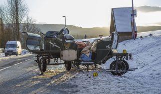 Eine Schlittenfahrt im Erzgebirge endet tödlich. (Foto)