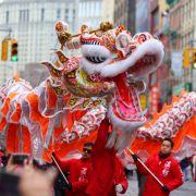 """China feiert Neujahrsfest - Dasprophezeit das """"Jahr des Hundes""""! (Foto)"""