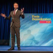 Klingelnde Kassen! So viel verdient der FDP-Chef (Foto)