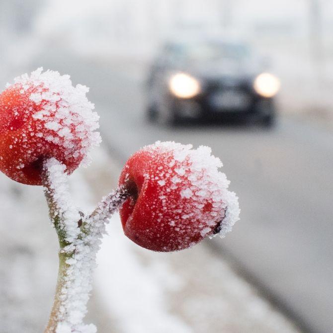 Russen-Peitsche bringt eisige Temperaturen (Foto)
