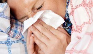 Die Grippewelle hat Deutschland fest im Griff. (Foto)