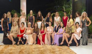 Diese jungen Frauen buhlten aktuell um Bachelor Daniel Völz. (Foto)