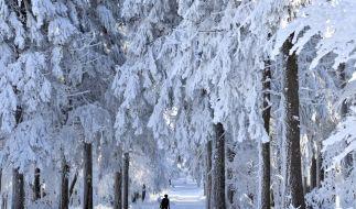 Aus Russland kommt eisige Polarluft nach Deutschland. (Foto)