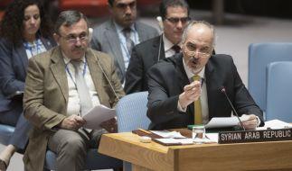 Der UN-Sicherheitsrat hat eine Resolution für eine Waffenruhe in Syrien verabschiedet. (Foto)
