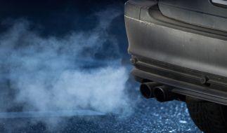 Das Bundesverwaltungsgericht in Leipzig fällt sein Urteil zu möglichen Fahrverboten für Diesel-Fahrzeuge. (Foto)
