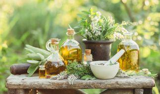 In der Natur gibt es jede Menge Pflanzen, die wie Doping wirken. (Foto)