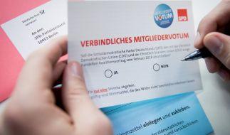 Hat die SPD-Basis für die GroKo gestimmt? (Foto)