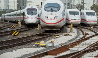 Die Bahn verkauft jetzt Mülleimer. (Foto)