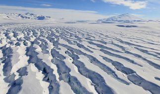In der Antarktis sollen sich einer bizarren Theorie zufolge Aliens und Nazis verstecken (Symbolbild). (Foto)