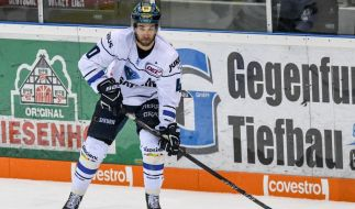 In der Deutschen Eishockey Liga laufen aktuell die Viertelfinalspiele. (Foto)