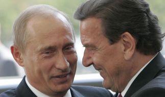 Gerhard Schröder und Wladimir Putin verbindet eine lange Freundschaft. (Foto)