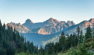 In der malerischen Kulisse des Snoqualmie National Parks im US-Bundesstaat Washington baute sich ein Pädophiler ein geheimes Kinderporno-Lager auf (Symbolbild). (Foto)