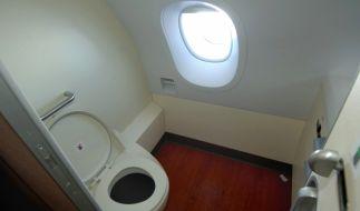 Sex auf der Flugzeugtoilette kommt offenbar nicht aus der Mode. (Foto)