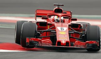 Die Formel-1-Saison 2018 begann in Australien. (Foto)