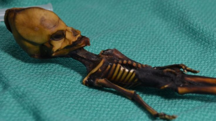 Doch kein Außerirdischer? Rätsel um Mumie gelöst