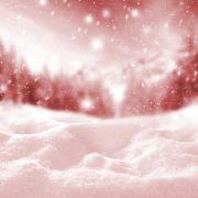 Bizarres Phänomen! Blutschnee färbt Skigebiete ein (Foto)