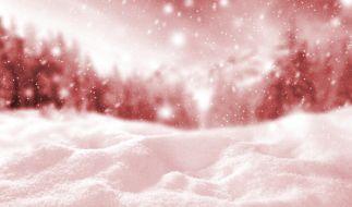 Blutschnee färbt Skigebiete ein. (Foto)