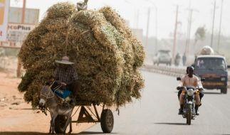 In Niger ist ein deutscher Entwicklungshelfer entführt worden. (Foto)