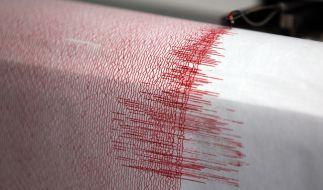 Ein leichtes Erdbeben riss in der vergangenen Nacht Menschen in Süddeutschland aus dem Schlaf. (Foto)