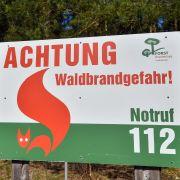 Alarmstufe Rot! HIER wüten Waldbrände in Deutschland (Foto)
