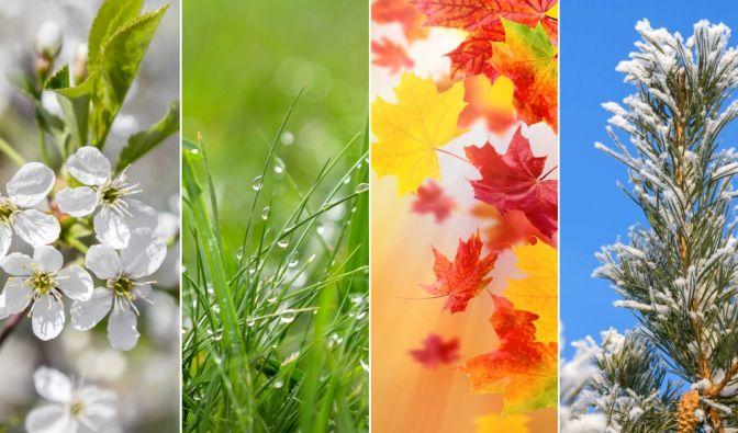Phänologische Jahreszeiten