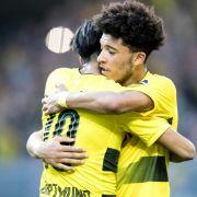 Borussia Dortmund,Bayern München und Co. im BuLi-Test (Foto)
