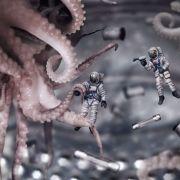 Irre Theorie! Sind Oktopusse und Tintenfische Aliens? (Foto)