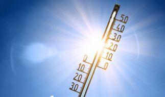 Der Mai endet mit sommerlichen Temperaturen über 30 Grad. (Foto)