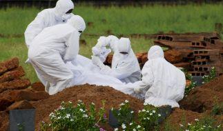 Der Nipah-Virus ist in Indien ausgebrochen. (Foto)
