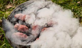 Die Schadstoffe aus dem Grillrauch werden durch die Haut noch intensiver aufgenommen werden als durchs Einatmen. (Foto)