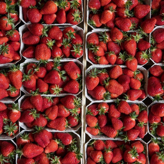 Abartig! Kundin entdeckt Haarbüschel in Aldi-Erdbeeren (Foto)