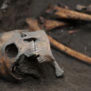 Grauenhafter Schädel-Fund in Kartoffelfeld (Foto)