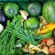 Vorsicht! DIESES Gemüse macht uns krank! (Foto)