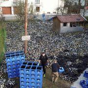 Dieses Paar bekommt 30.000 Pfandflaschen zur Hochzeit (Foto)