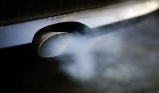 Nach dem Abgas-Skandal droht Dieselbesitzern nun die Stilllegung. (Foto)