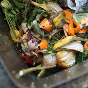 Mit DIESEN Tipps vermeiden Sie Mief in der Mülltonne (Foto)