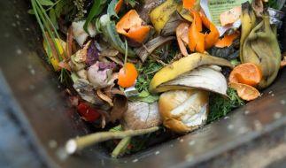 Essensreste und Bioabfälle faulen in der Sommerhitze schneller, daher müffelt es stärker aus den Mülltonnen. (Foto)