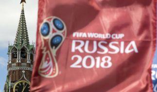 Die Fußball-WM 2018 befindet sich auf der Zielgeraden. (Foto)